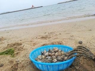 浜辺の食べ物のボウルの写真・画像素材[2392864]
