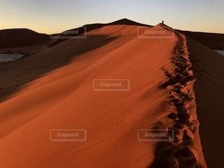ナミブ砂漠の写真・画像素材[2395676]