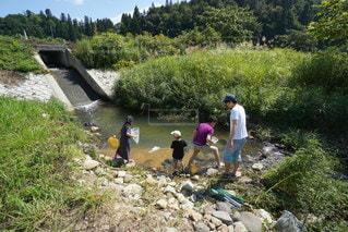 川遊びの写真・画像素材[2396848]