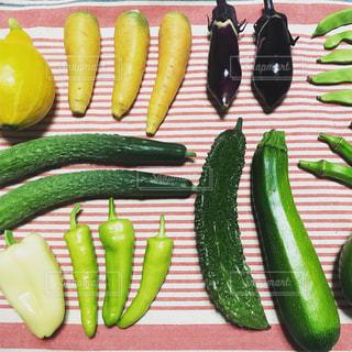 夏野菜の写真・画像素材[2397860]