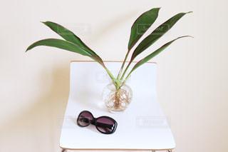 テーブルの上の花瓶の写真・画像素材[2406591]