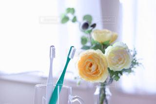 テーブルの上の花瓶の写真・画像素材[2438218]