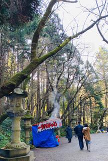 香取神宮の参道の写真・画像素材[2870840]