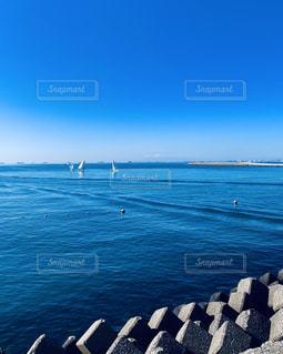 稲毛海浜公園から眺めた東京湾の写真・画像素材[2883470]