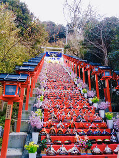 勝浦ビックひな祭りの写真・画像素材[2933006]