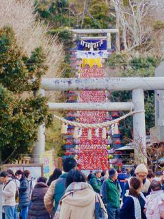 勝浦ビックひな祭りの写真・画像素材[2933005]
