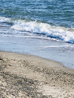 春先の浜辺の写真・画像素材[3002523]