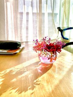 朝陽の入る窓辺に置いたガーベラ。の写真・画像素材[4361652]