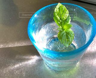 琉球グラスに入ったミント水の写真・画像素材[4762107]