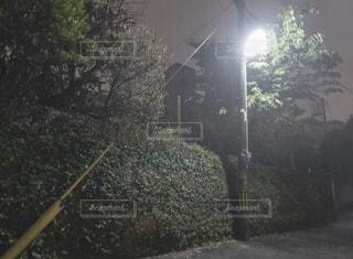大雨の夜の写真・画像素材[2654173]
