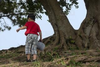 ガジュマルの木の下で休憩をする子供の写真・画像素材[3639428]