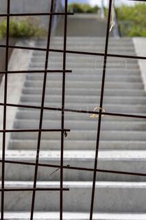 整備中の工事現場に設置された錆びたメッシュフェンスの写真・画像素材[4818141]