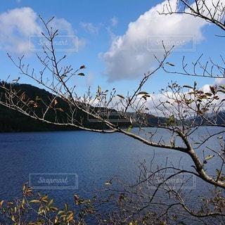 秋晴れの写真・画像素材[2647117]
