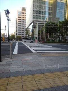 築地横断歩道01の写真・画像素材[4354896]