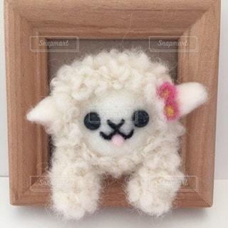 羊の写真・画像素材[92542]