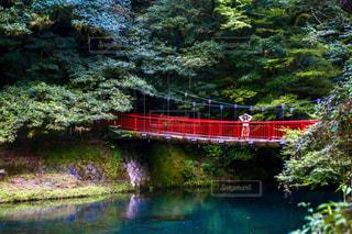 川に架かる赤い橋の上に佇む女性の写真・画像素材[2436691]