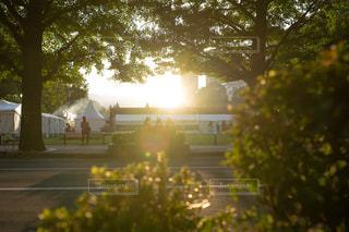 夕日に浮かぶシルエットの写真・画像素材[2472465]