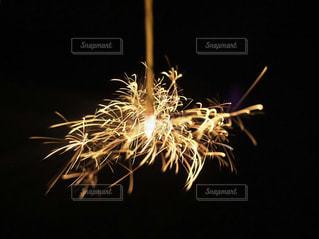 夏といえば線香花火の写真・画像素材[2404905]