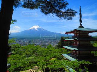 新倉富士浅間神社の写真・画像素材[2420820]