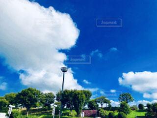 夏の空の写真・画像素材[2422609]