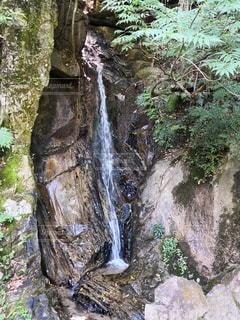 森の中の滝の写真・画像素材[2411078]
