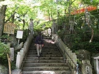 広島市 三滝寺の写真・画像素材[2411086]
