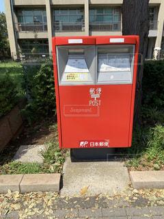 郵便ポスト〜足元に白い花を添えて〜の写真・画像素材[2428374]
