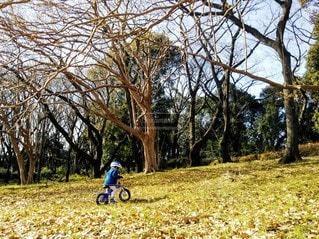 自転車の練習をするこどもの写真・画像素材[2438942]