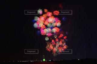 泉州 光と音の夢花火の写真・画像素材[2412417]
