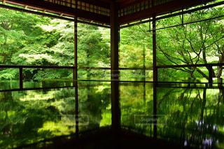 瑠璃光院in京都の写真・画像素材[2414190]