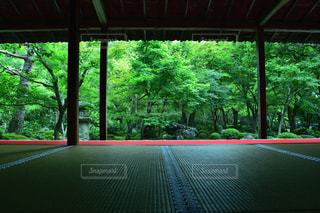 圓光寺の眺めの写真・画像素材[2497358]