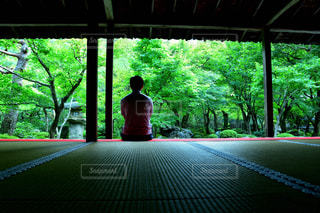 圓光寺の景色の写真・画像素材[2497359]