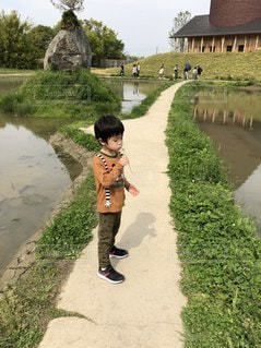 タンポポの綿毛にハマる少年の写真・画像素材[2414138]