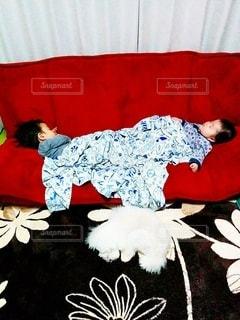 可愛い昼寝の写真・画像素材[2435101]