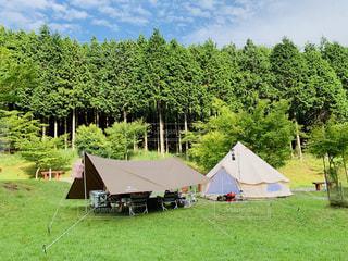 緑豊かキャンプの写真・画像素材[2429865]