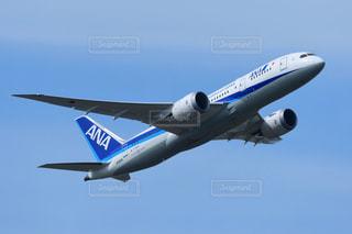 青空を飛ぶ中型旅客機 ANA ボーイング787の写真・画像素材[2419831]