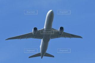 澄んだ青空を飛ぶ中型旅客機 B787-8ドリームライナーの写真・画像素材[2424691]