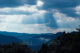 背景に山がある木の写真・画像素材[2464498]