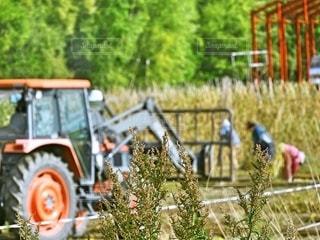 農作業の風景の写真・画像素材[2507923]