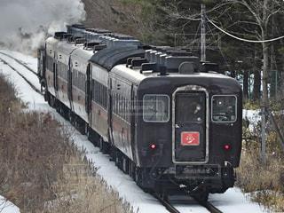 森の線路を下って移動する蒸気機関車の写真・画像素材[3029317]
