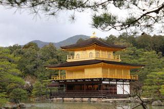 金閣寺の写真・画像素材[2421976]