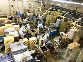桔梗信玄餅の工場の写真・画像素材[2422107]
