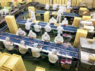 桔梗信玄餅の工場の写真・画像素材[2422108]