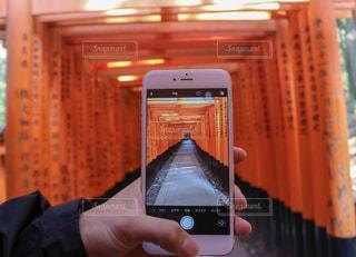 伏見稲荷大社を背景に携帯電話を持つ手の写真・画像素材[2432449]