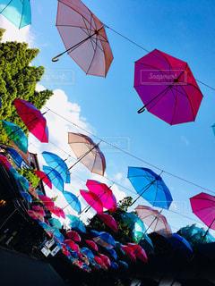 開いているたくさんの傘の写真・画像素材[2441464]