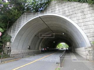紫陽花の下のトンネルの写真・画像素材[2422905]