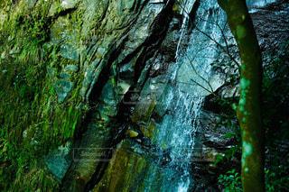 森林の小さな滝の写真・画像素材[2464869]