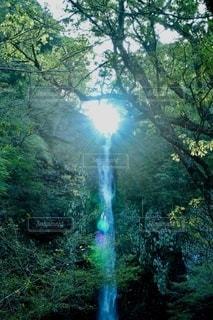 滝に差し込む光の写真・画像素材[2490229]