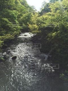 自然 - No.93273
