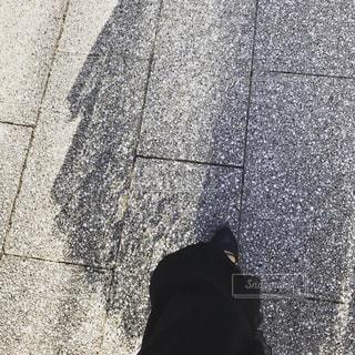石畳と影の写真・画像素材[2427651]